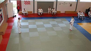Judo bij Vereniging Judo Ryu Rijkse