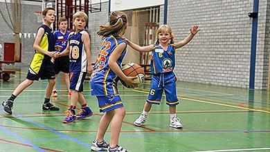 Basketballvereniging Woodpeckers